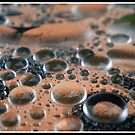 Drip... Drop... by Reza G Hassani