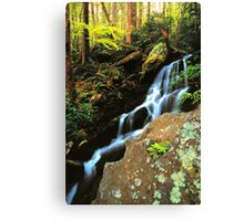 WATERFALL,TREMONT Canvas Print