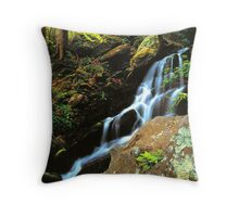 WATERFALL,TREMONT Throw Pillow
