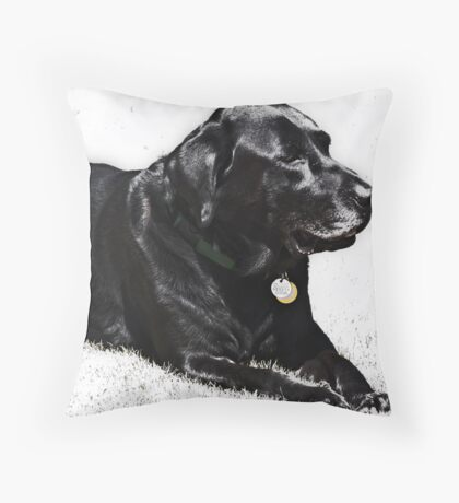 In Memory of Max Throw Pillow