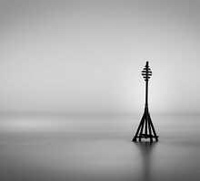 Solitary by Martin Griffett