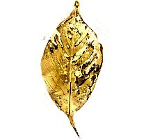 Cherry Leaf print- Ink on paper Photographic Print
