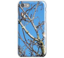 Gold Finches iPhone Case/Skin