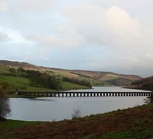 Lady Bower Reservoir by ShaunDaysh