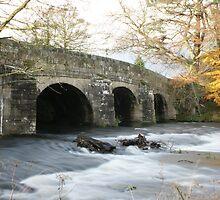Lady Bower Bridge by ShaunDaysh