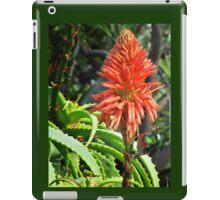 Sunbird on Aloe - 2 iPad Case/Skin