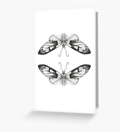 Moth Art Print Greeting Card