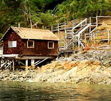 Refuge Cottage by Anne McKinnell