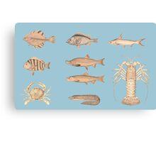 Vintage Fish design Canvas Print