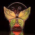Butterfly by Stephen  Van Tuyl