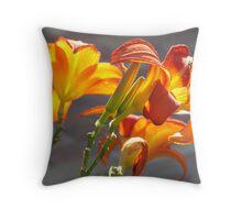 Triple Orange Hippeasterum-(Glow) Throw Pillow