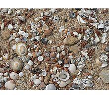 Jewels of the Sea - Limestone Coast Photographic Print