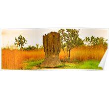Kakadu's termite hills at sunset Poster