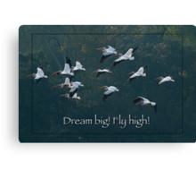 Dream Big! Fly High! Canvas Print