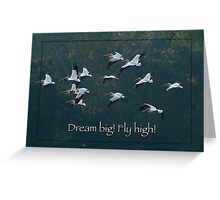 Dream Big! Fly High! Greeting Card