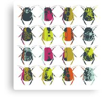 Beetle Print Canvas Print