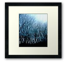 Lost in a Winter Oblivion Framed Print