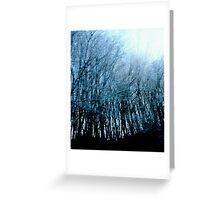 Lost in a Winter Oblivion Greeting Card