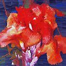 Orangey-red canna lily by  B. Randi Bailey
