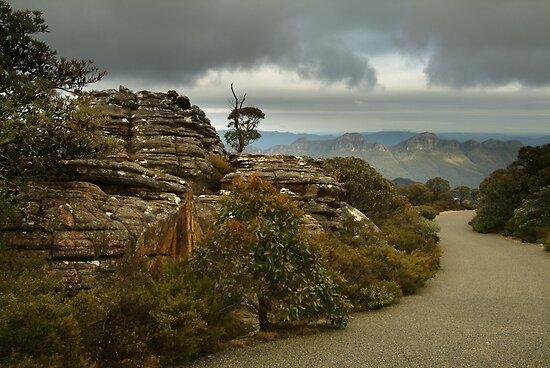 Mt William Grampians  by Joe Mortelliti