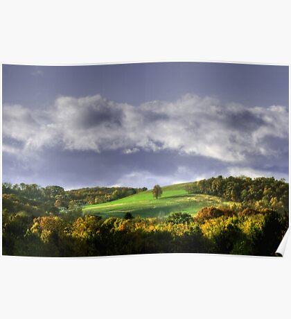 Early Autumn Hillside View Poster