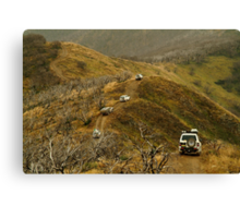 Mt Blue Rag,Victorian High Country Canvas Print