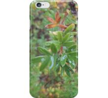 Wet Leaves iPhone Case/Skin