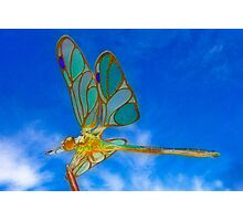 Dragonfly in Orton Photographic Print