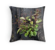 Re-generation Throw Pillow
