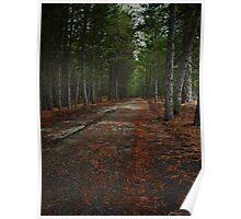 La strada nel bosco Poster