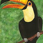 Toucan by melly385