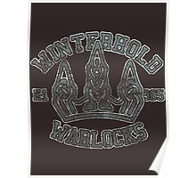 Skyrim - Football Jersey - Winterhold Warlocks Poster