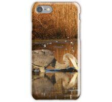 Great Blue Heron - Fishing iPhone Case/Skin
