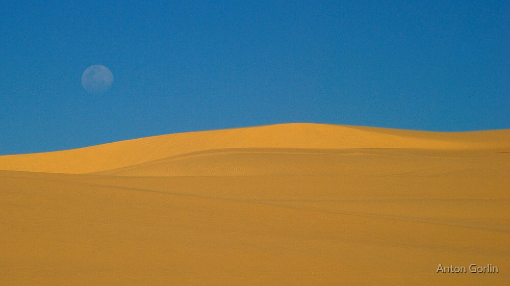 Desert graphics by Anton Gorlin