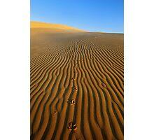 Journey to Nowhere Photographic Print