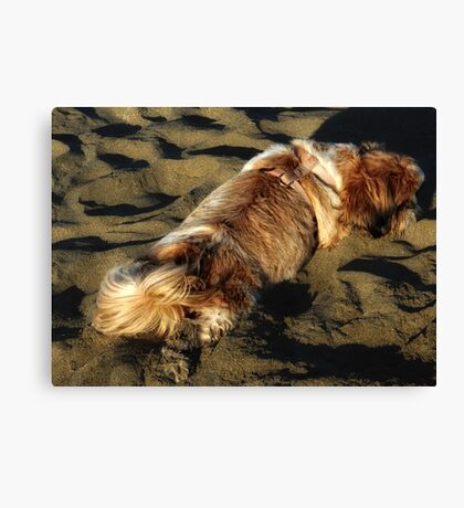 Too Pooped To Pant! Canvas Print