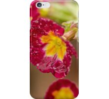 Wet Primrose iPhone Case/Skin