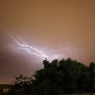 Lightning #2 by Andrea Searle