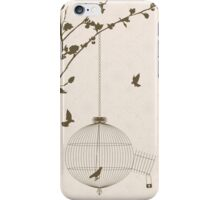 Vintage style card with bird silhouettes and birdcage iPhone Case/Skin
