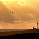Let There Be (Yarmouth) Light by Debbie  Roberts