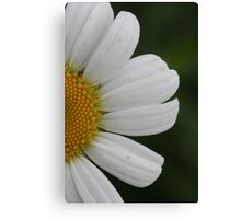 Bright and Happy  Canvas Print