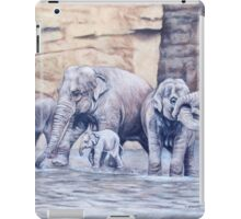 Bath Time iPad Case/Skin