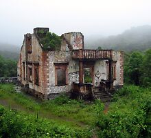 House in the Rain Forest by Shelby  Stalnaker Bortone
