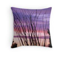 Desert Silhouettes, Ocotillo Throw Pillow
