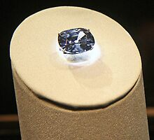 The Hope Diamond by Cora Wandel