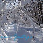 Seasons Greetings (card)  by Jeff Stroud