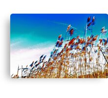 Windy Rush! Canvas Print
