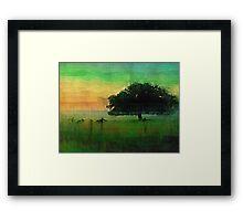 That Tree.  Framed Print