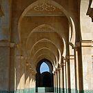 Archway Gallery at Hassan II Mosque, Casablanca, Morocco  by Petr Svarc