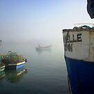 Langebaan fishing boats by fourthangel
